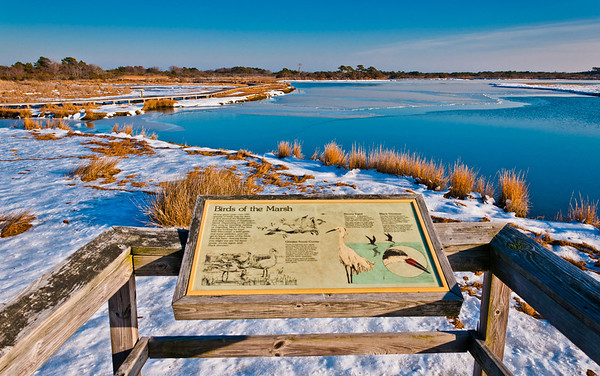 Snow-covered marsh and informational sign at Assateague Island National Seashore, Maryland