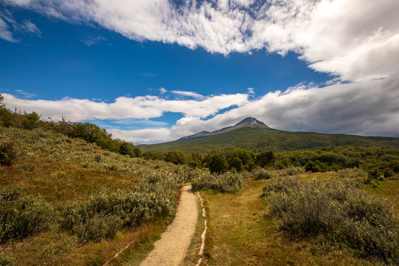 Hiking in Argentina in Tierra del Fuego National Park should be part of any Patagonia itinerary