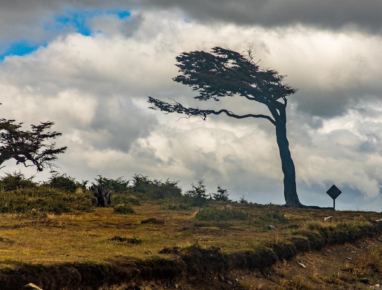 Patagonian Winds Carve The Landscape