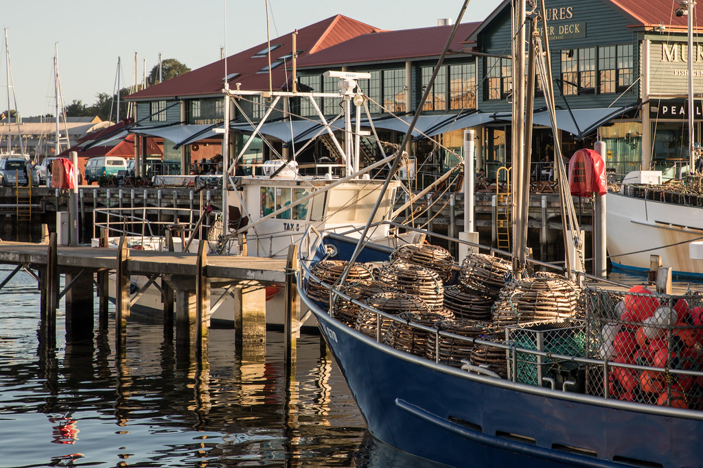 Crab Traps in the Port of Hobart