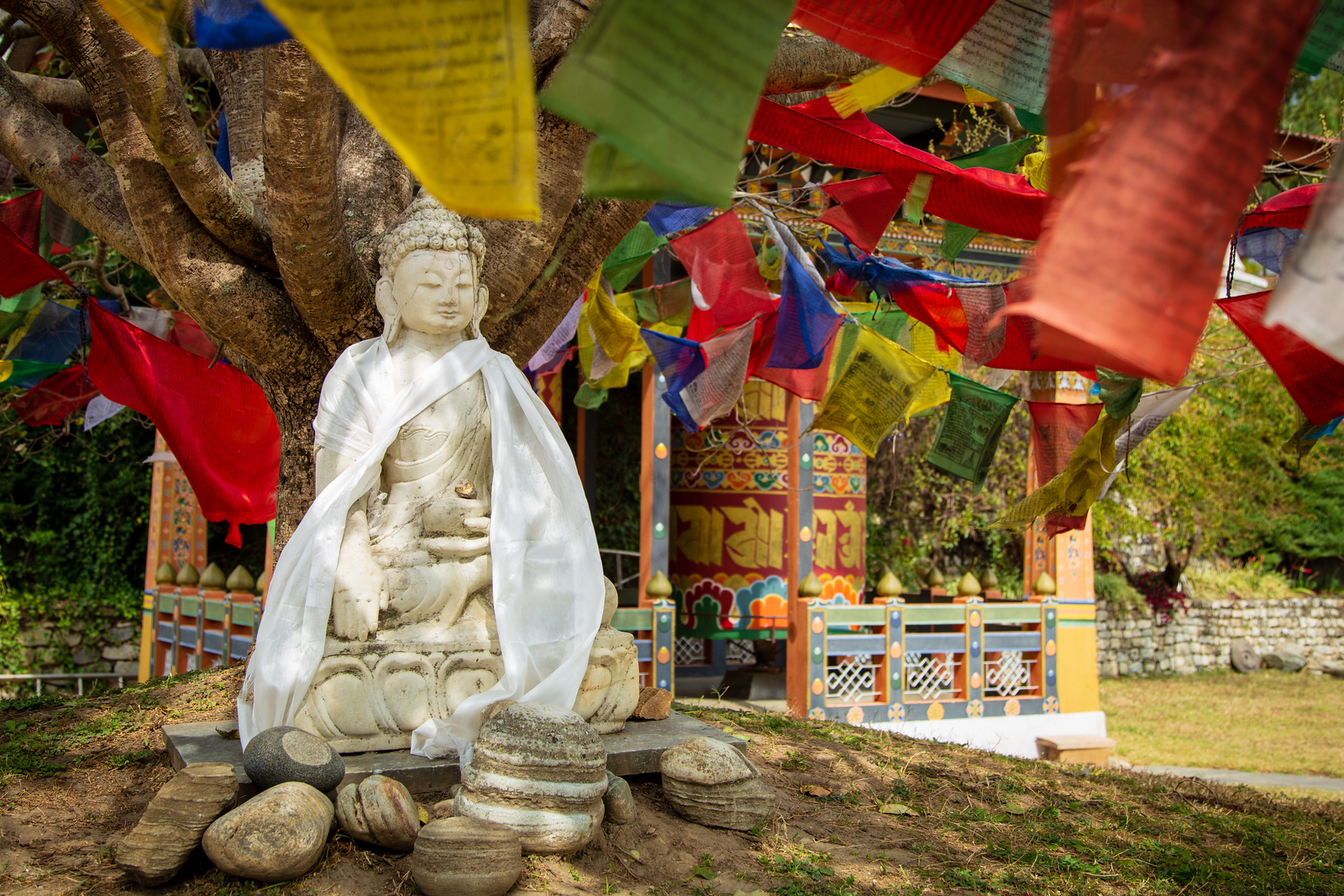 Prayer Flags and the Buddha Outside of Khamsum Yulley Namgyal Temple