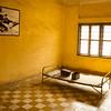 Tortue Room