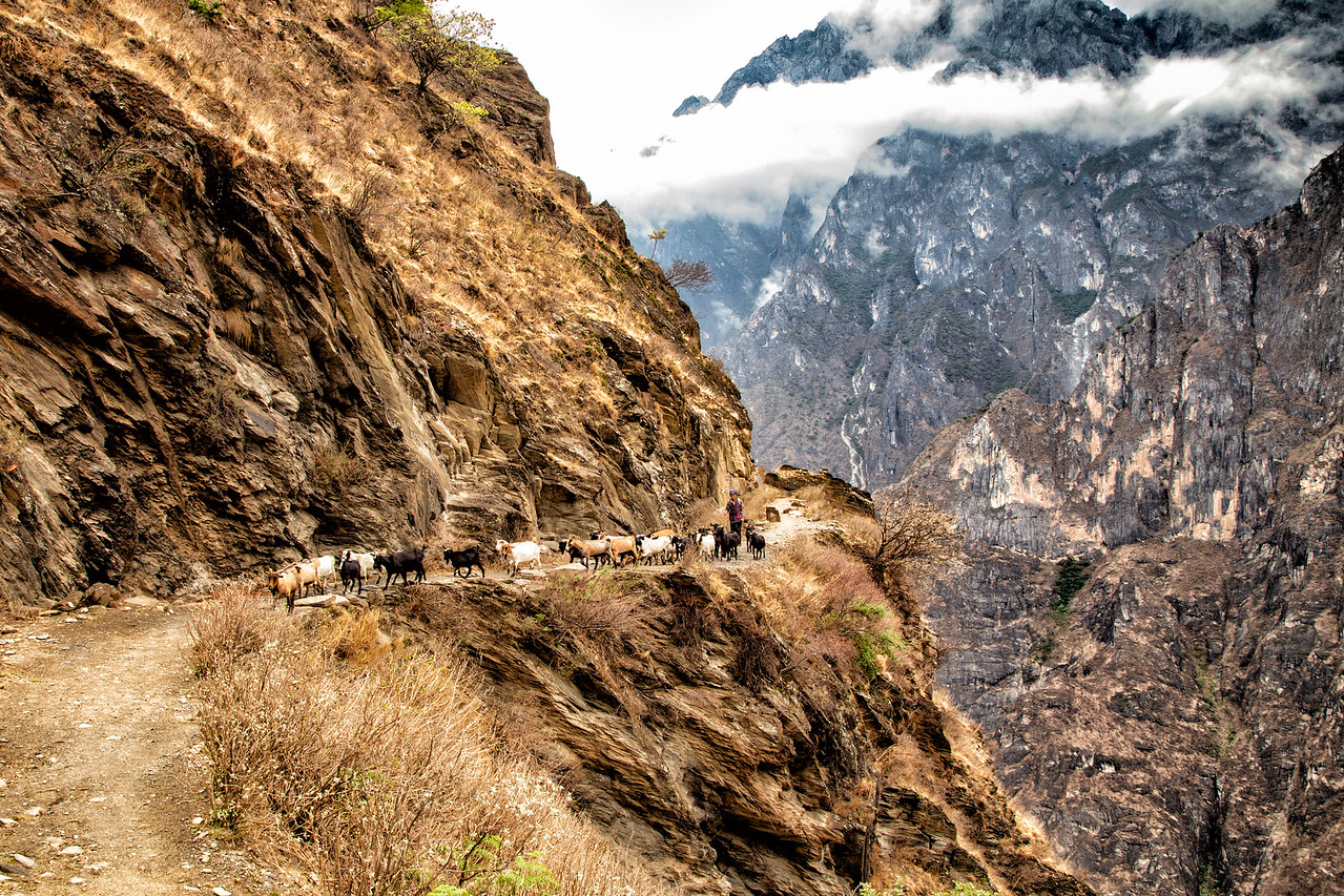 Tiger Leaping Gorge Hike in Yunnan, China