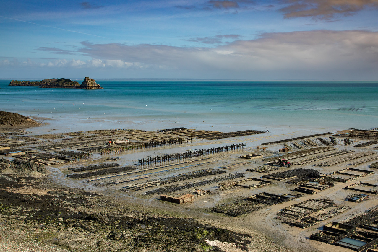 View of the Oyster Beds from Pointe du Grouin in Cancale, France