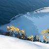 Blue Ice on Shoreline