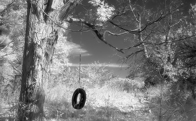 Tire Swing  |  Infrared Study