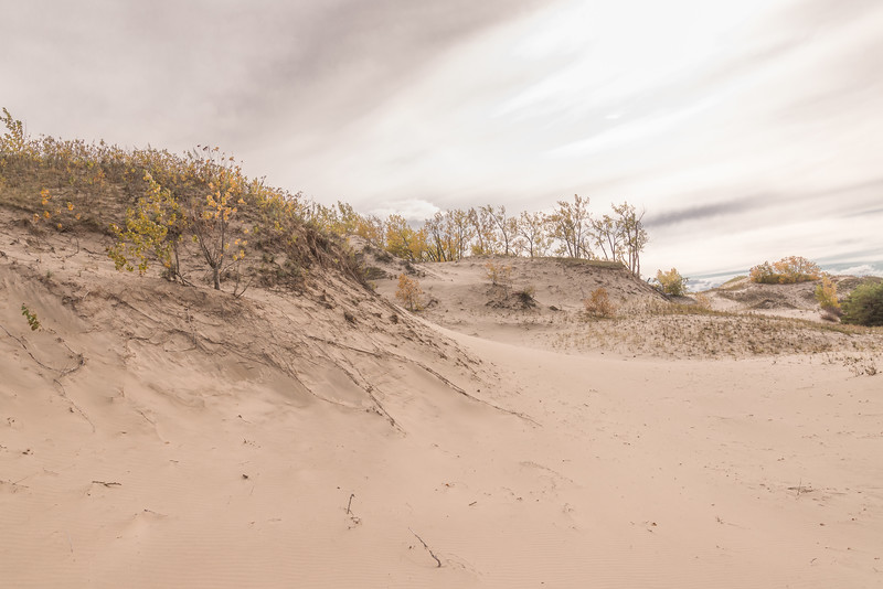 West Dunes in Autumn 2