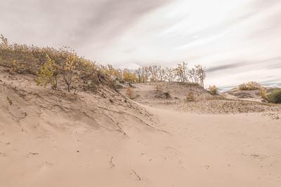 West Dunes in Autumn 2
