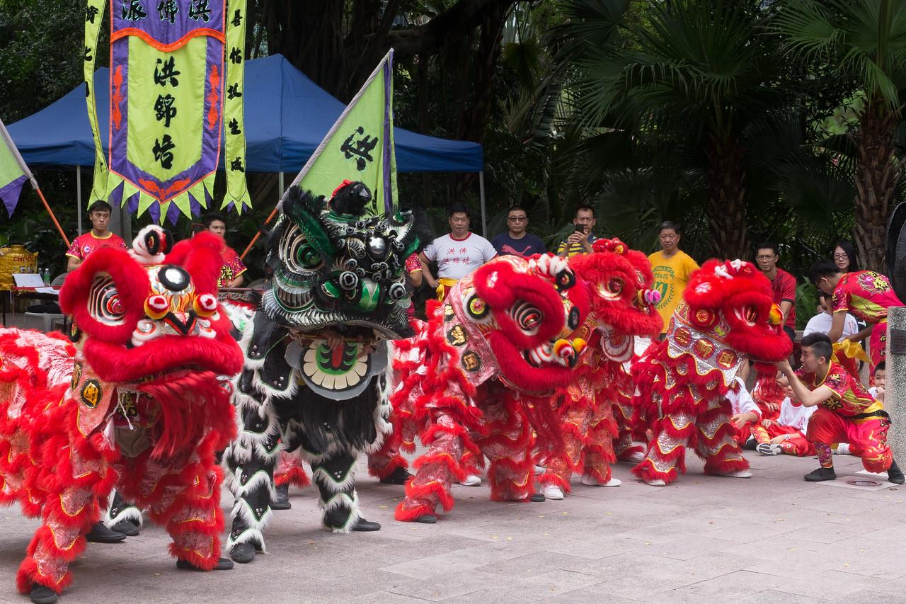 Image of Lion Dancing in Hong Kong