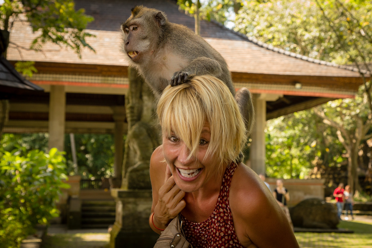 Crazy Monkey Climbed on Sarah's Head at Ubud Monkey Forest