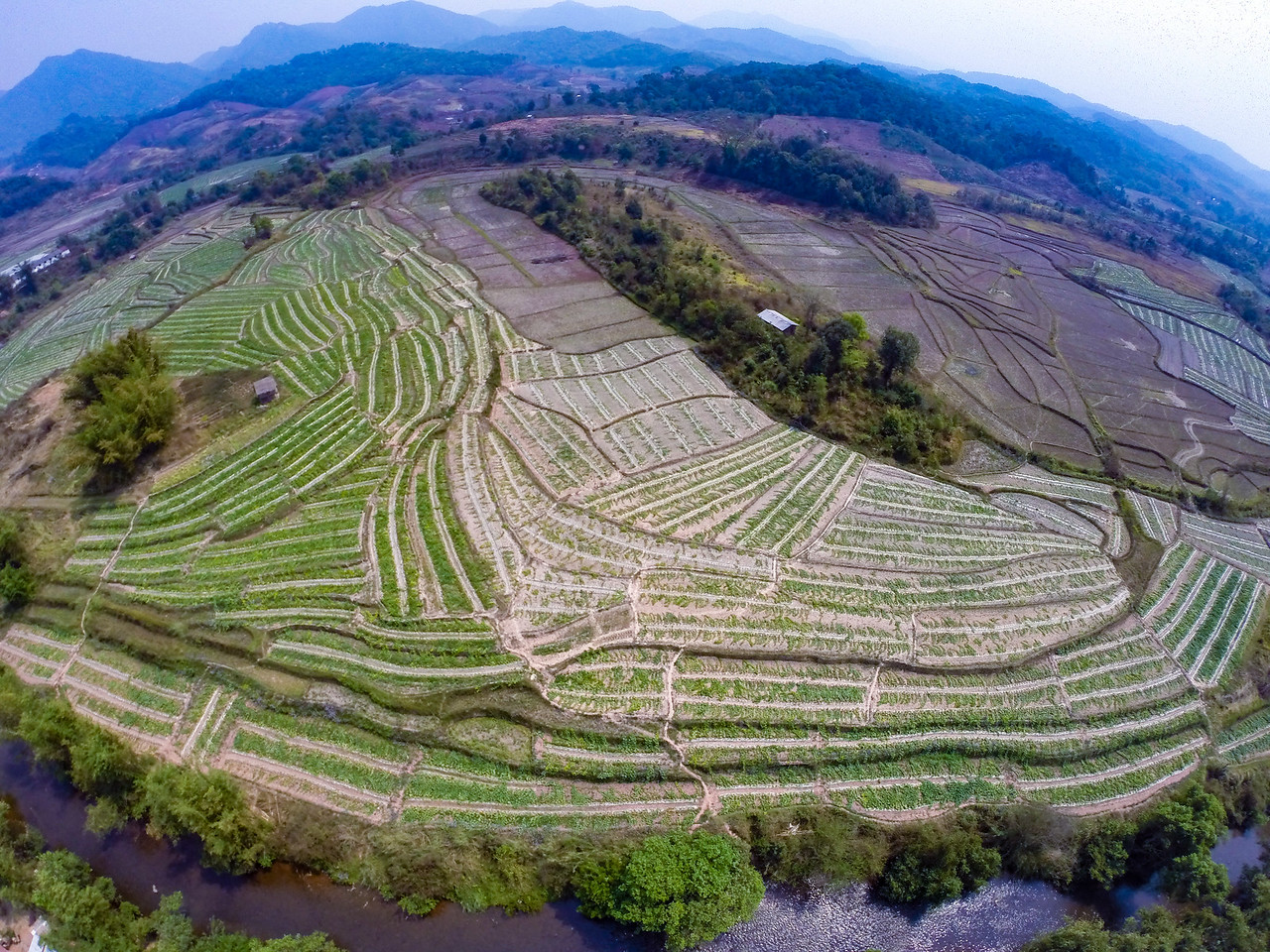 Aerial View of Rice Fields Behind the Hill Tribe Village