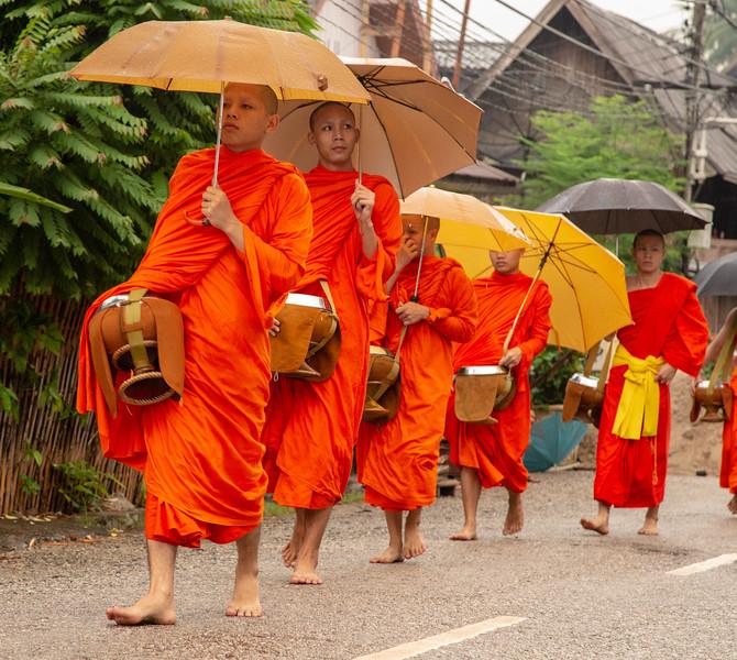 Buddhist Monks recieving alms in Luang Prabang, Laos