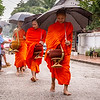 Buddhist Monks recieving alms in Luang Prabang, Laos