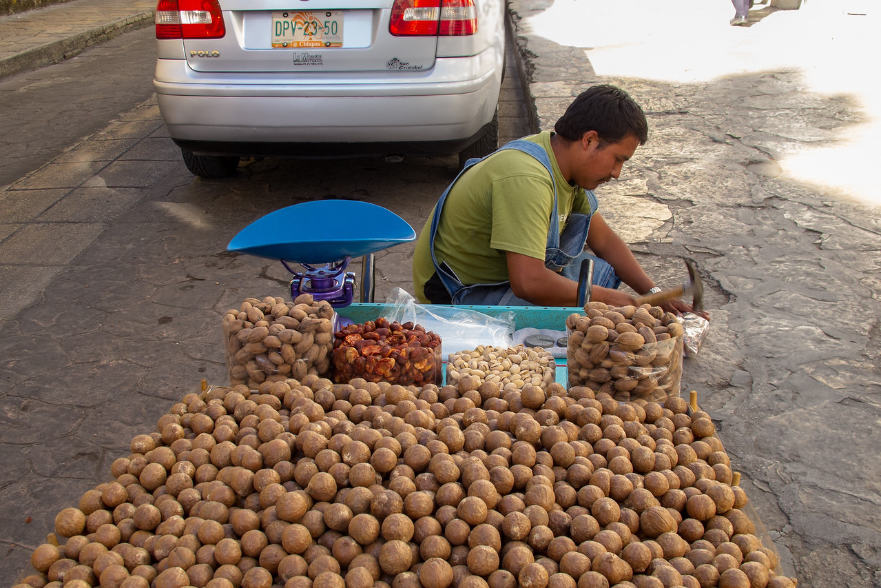 Macadamia Nut Vendor in San Cristobal de las Casas