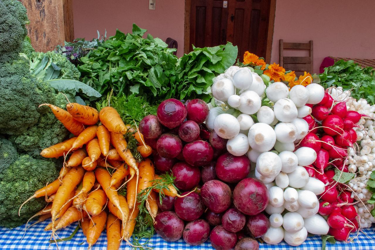 Organic Market Produce in San Cristobal de las Casas