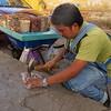 Macadamia Nut Vendor