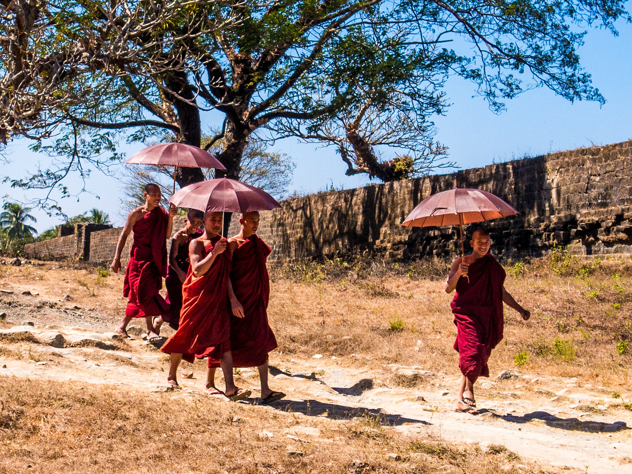 Buddhist Monks Walking With Umbrellas Outside a Pagoda in Mruak U, Myanmar
