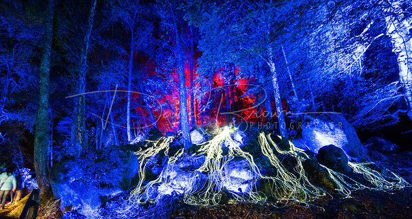"""Enchanted Forrest 2015, Flux, Loch Dunmore,Faskally woods, Pitlochry, Perthshire. Scotland Press Release  Release Date: 30th September 2015  Vivid Enchanted Forest illuminates dark Autumn nights     The Enchanted Forest, a Perthshire Big Tree Country event and Scotland's premier sound and light show, launched last night in an array of dazzling colours to a select audience of press and VIPs at Forestry Commission Scotland's Faskally Wood near Pitlochry.     The fourteenth event in the series delighted visitors with stunning aerial acrobatics, choreographed sound and light displays and, for the first time ever, visitors will have the opportunity to go """"off path"""" using a specially constructed pier that will situate them right at the heart of a stunning son et lumiere show.     On course to smash all previous box office records, organisers are predicting that over 55,000 visitors will flock to the Highland Perthshire town of Pitlochry this year to see the event and, with all Saturday nights during the run sold out and local hotels filling up quickly, they are urging customers to plan ahead.     Graham Brown, Chairman of The Enchanted Forest Community Trust commented:     """"We're delighted to announce our fourteenth show officially open to the public and the signs are looking positive that it will be another successful show for us this year. The event's success directly benefits the local business community of Highland Perthshire, many of whom are incredibly busy as a result of thousands of additional visitors to the area, but it also enables us to support local charities, clubs and organisations in the area, all of which deliver important services to the people of Highland Perthshire.""""     The show was officially pronounced open by Mike Cantlay, Chairman of VisitScotland who was in attendance along with his family. He commented:     """"As the current winner of our prestigious Thistle Award for Best Event, The Enchanted Forest continues to go from strength to strength and I"""