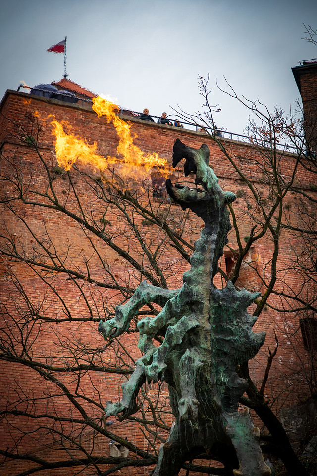 The fire-breathing Wawel Dragon