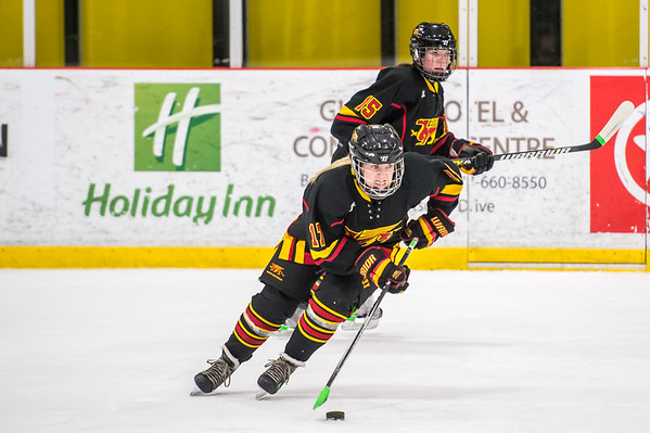 No.1 Ranked Guelph Gryphons Women's Hockey