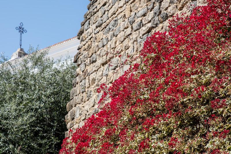 Flowers in Tavira Castle