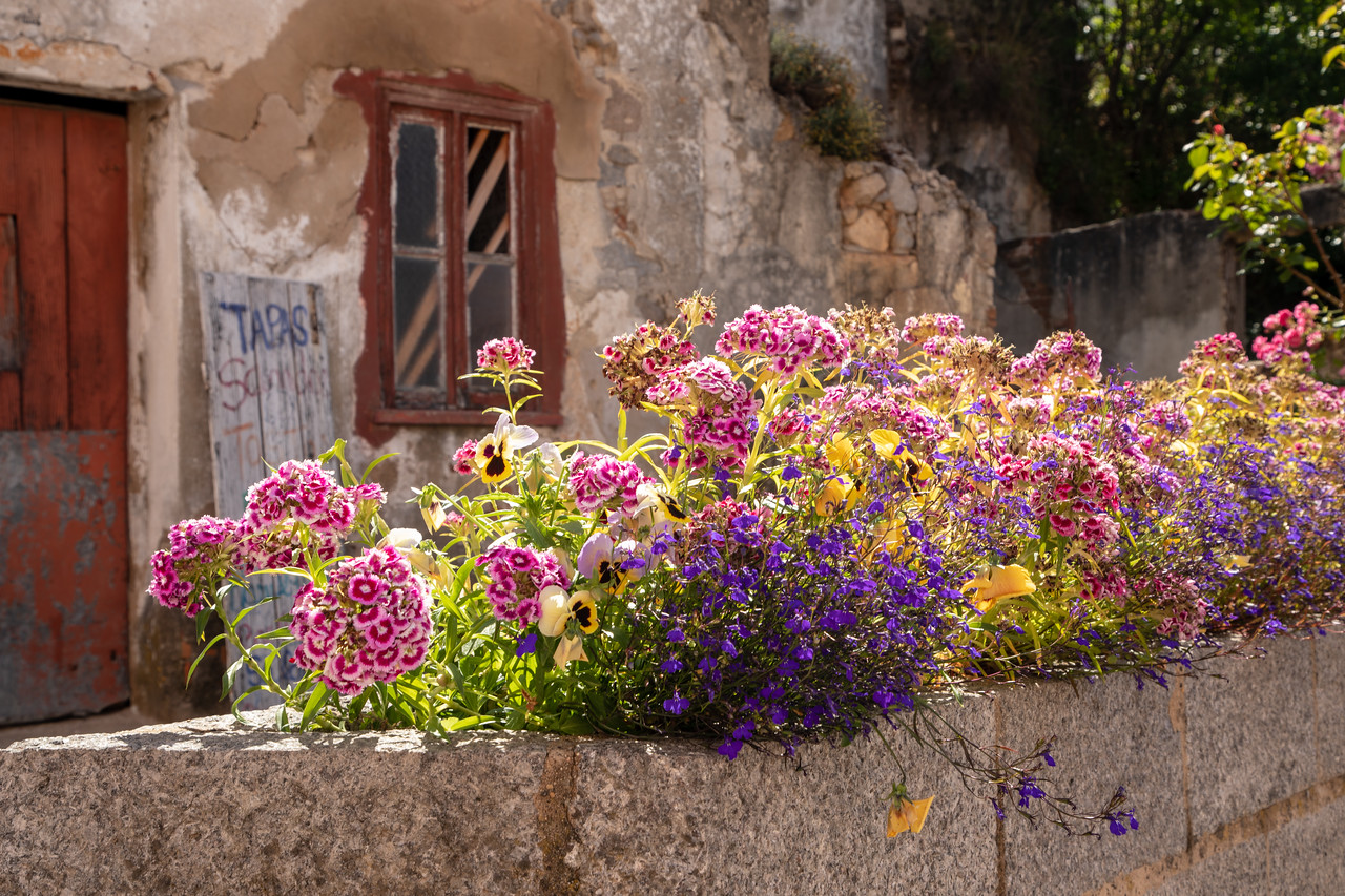 Flower Box in the Algarve Village of Monchique