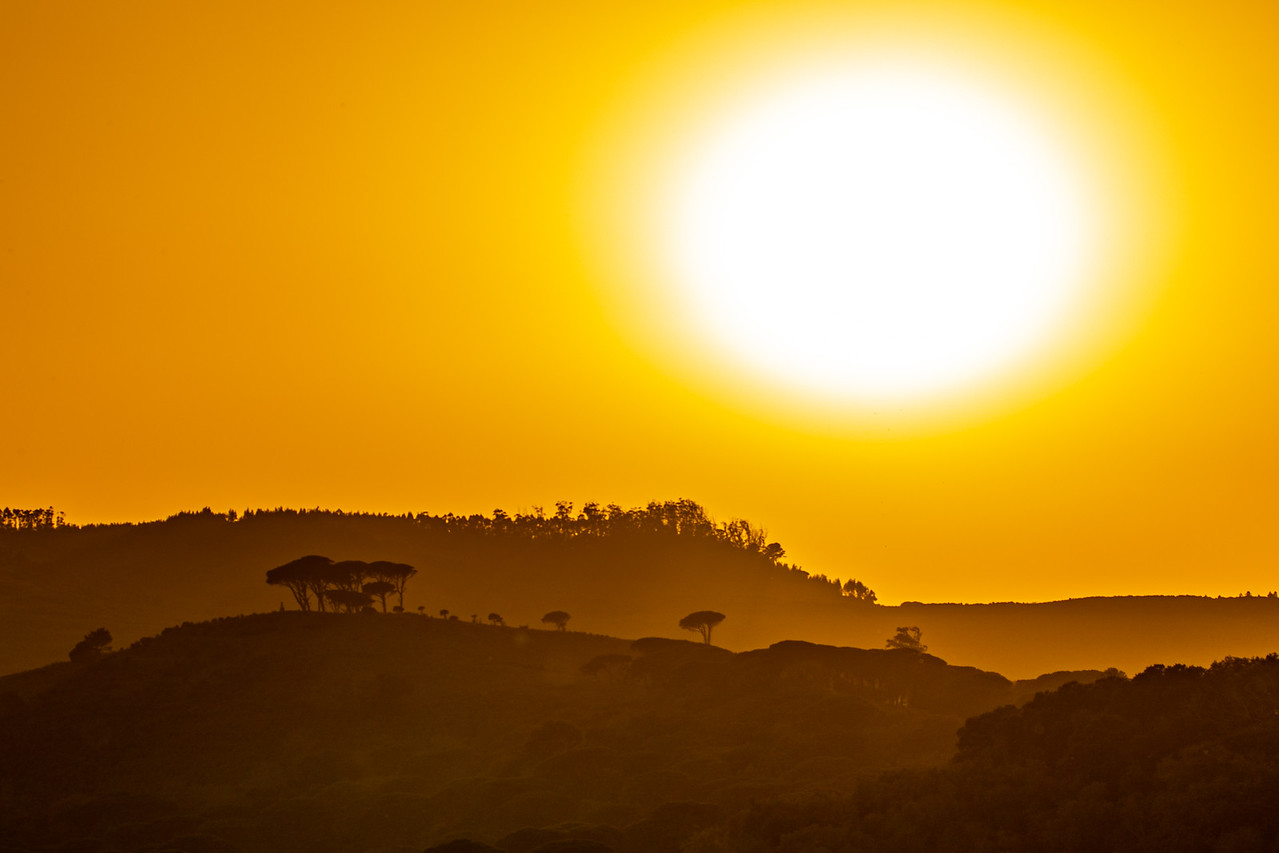 Photo of Sunset At The Iberian Wolf Sanctuary in Portugal