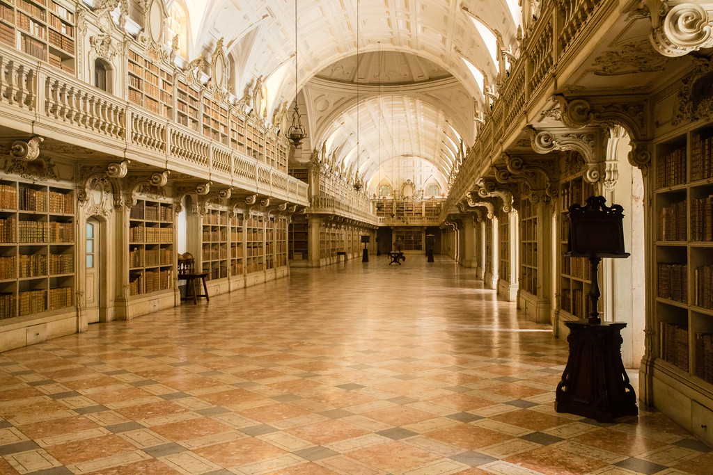 Yes, the library at Marfa Palace Palacio de Mafra actually has its own bat colony