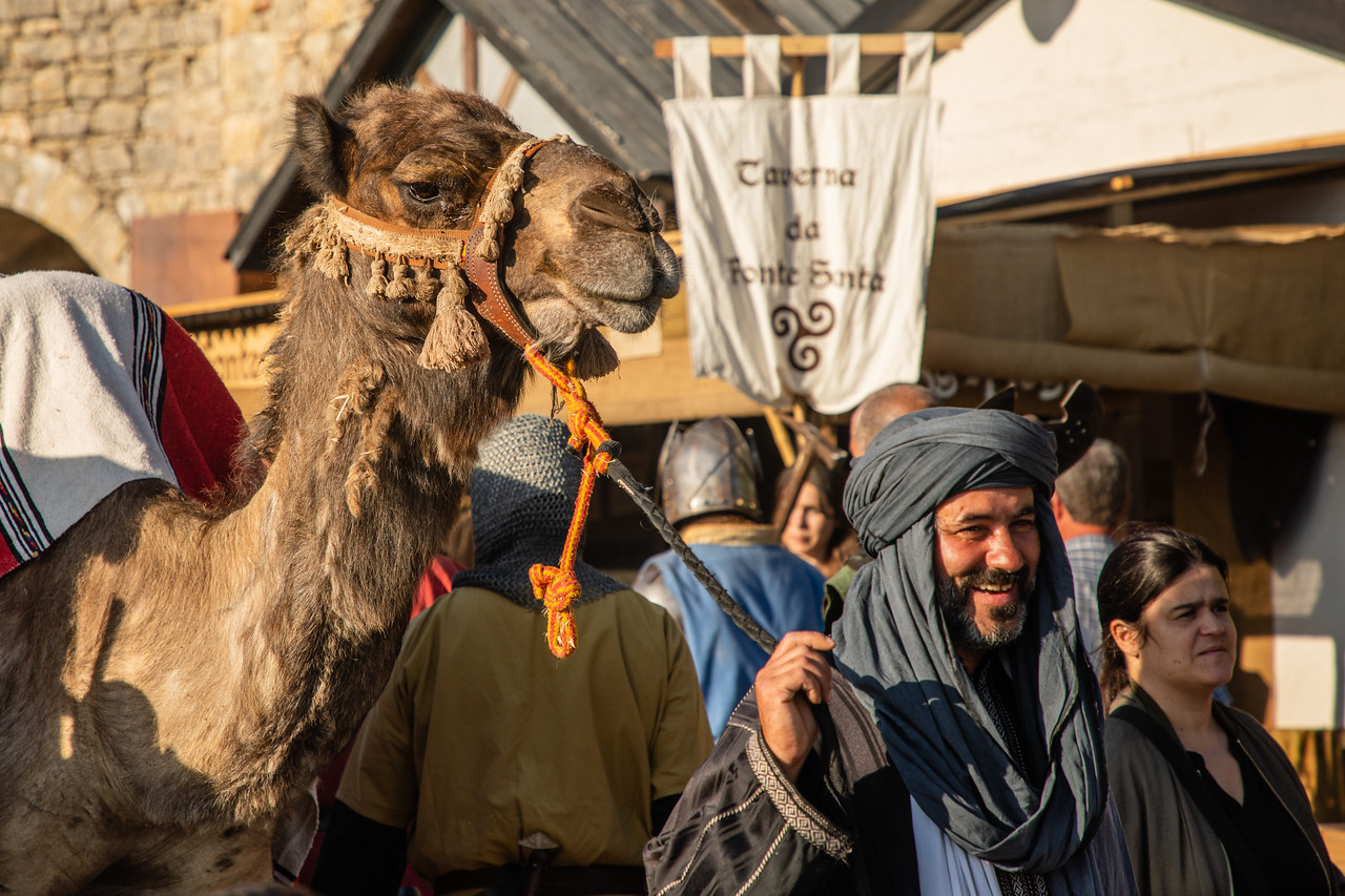 Image of Camel at Medieval Fair of Obidos, Portugal