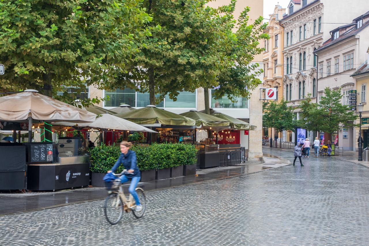 Любляна под дождем Чем заняться в Любляне, Словения Чем заняться в Любляне, Словения BL2A0173 X2