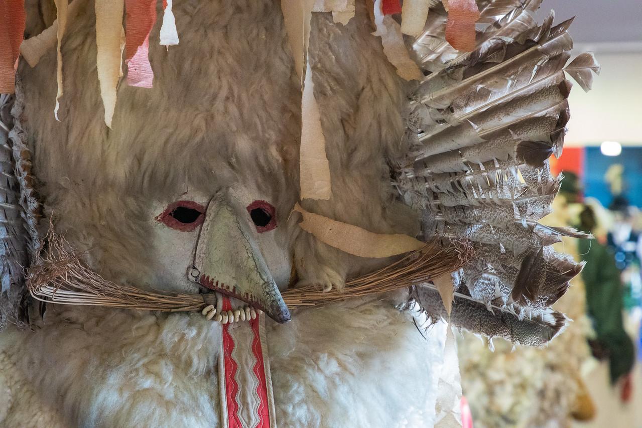 Выставка масок Kurenti в Птуй, Словения Чем заняться в Словении Чем заняться в Словении BL2A9677 X2