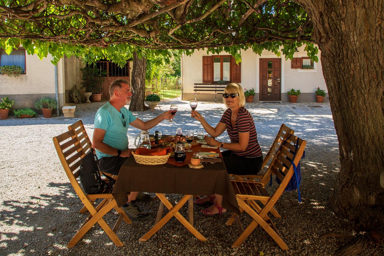Наслаждаясь обедом в Pršutarna Ščuka под тутовым деревом Словенская еда и вино Словенская еда и вино BL2A0024 X2