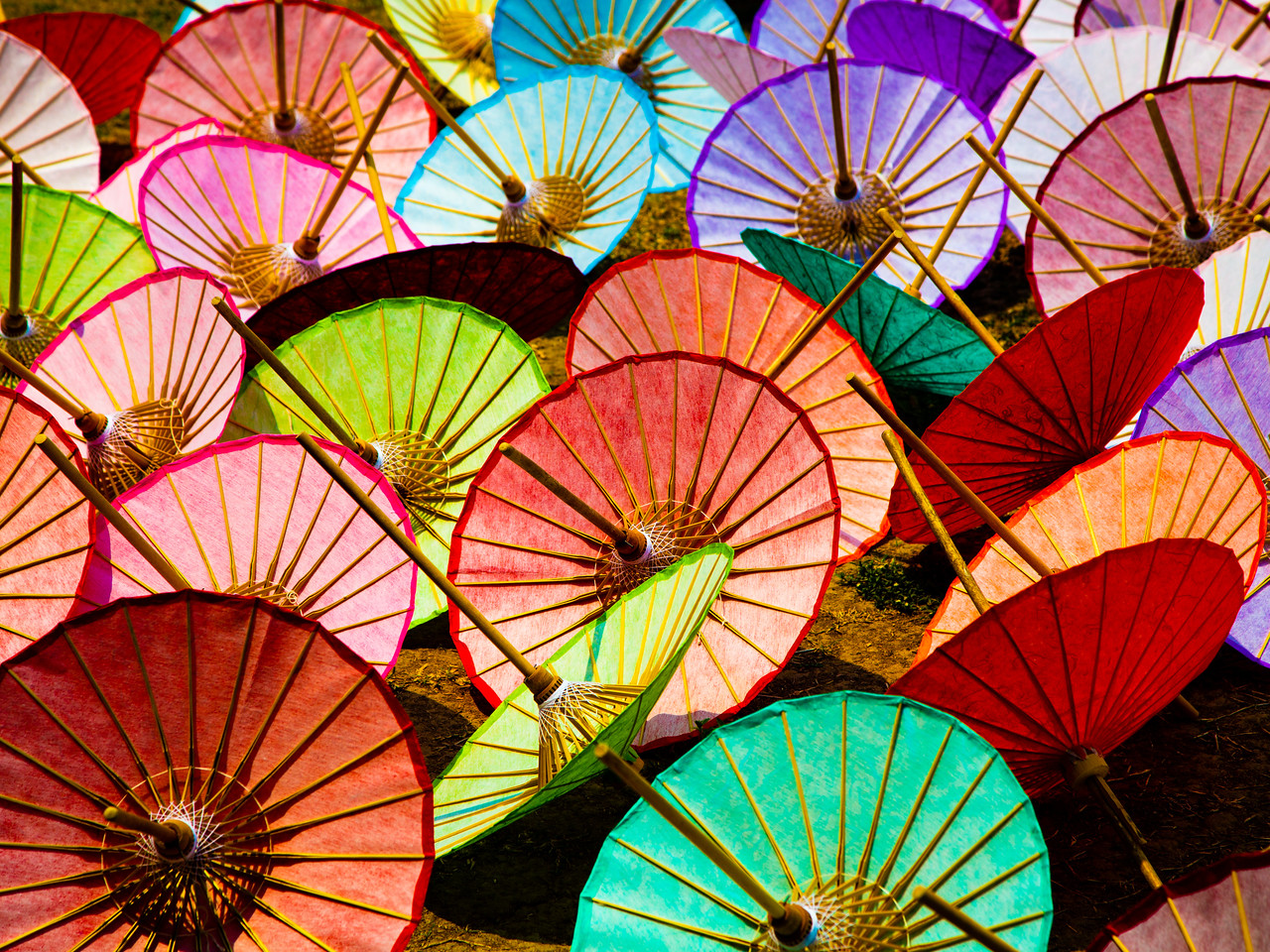 Painted Umbrellas Drying in a Filed near the Umbrella Factory