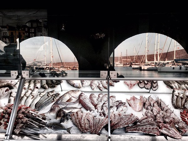 Fresh Seafood Display Case ar Ali Baba Restaurant in Alacati, Turkey