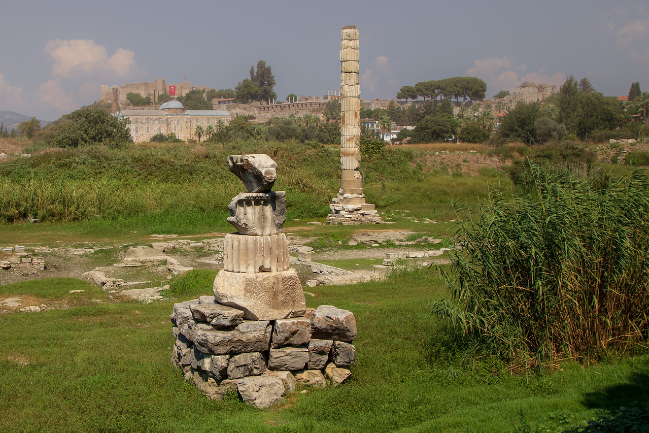 Picture of the Remains of Temple of Diana
