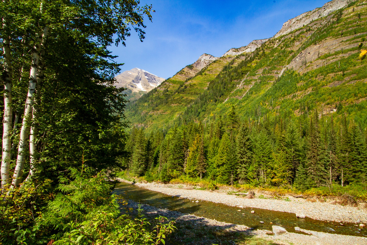 MacDonald Creek Along Going to the Sun Road in Glacier National Park