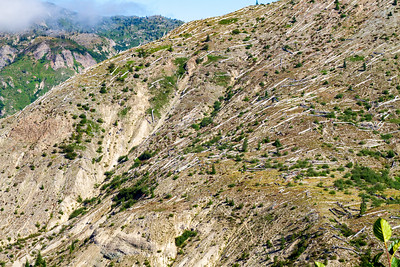 Pattern of Tree Destruction near Mt. Saint Helens
