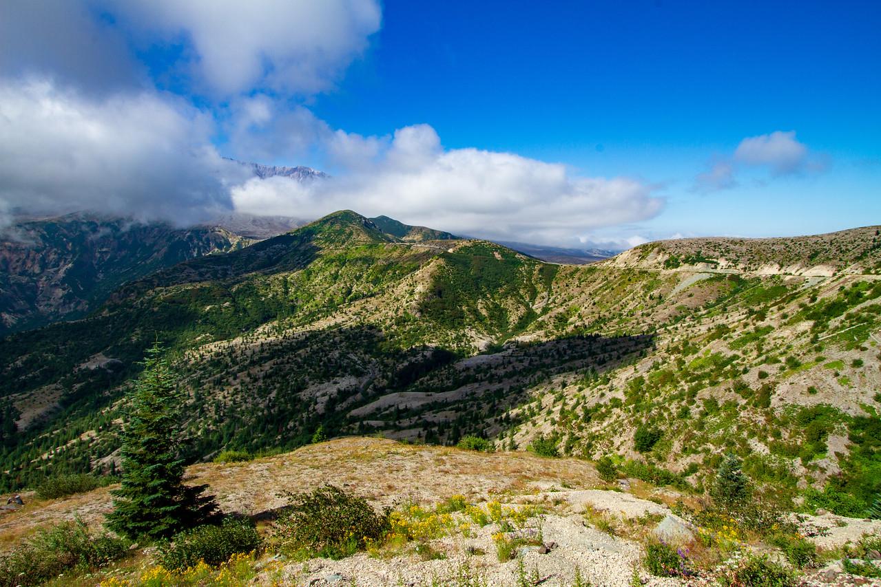 Mount Saint Helens National Park