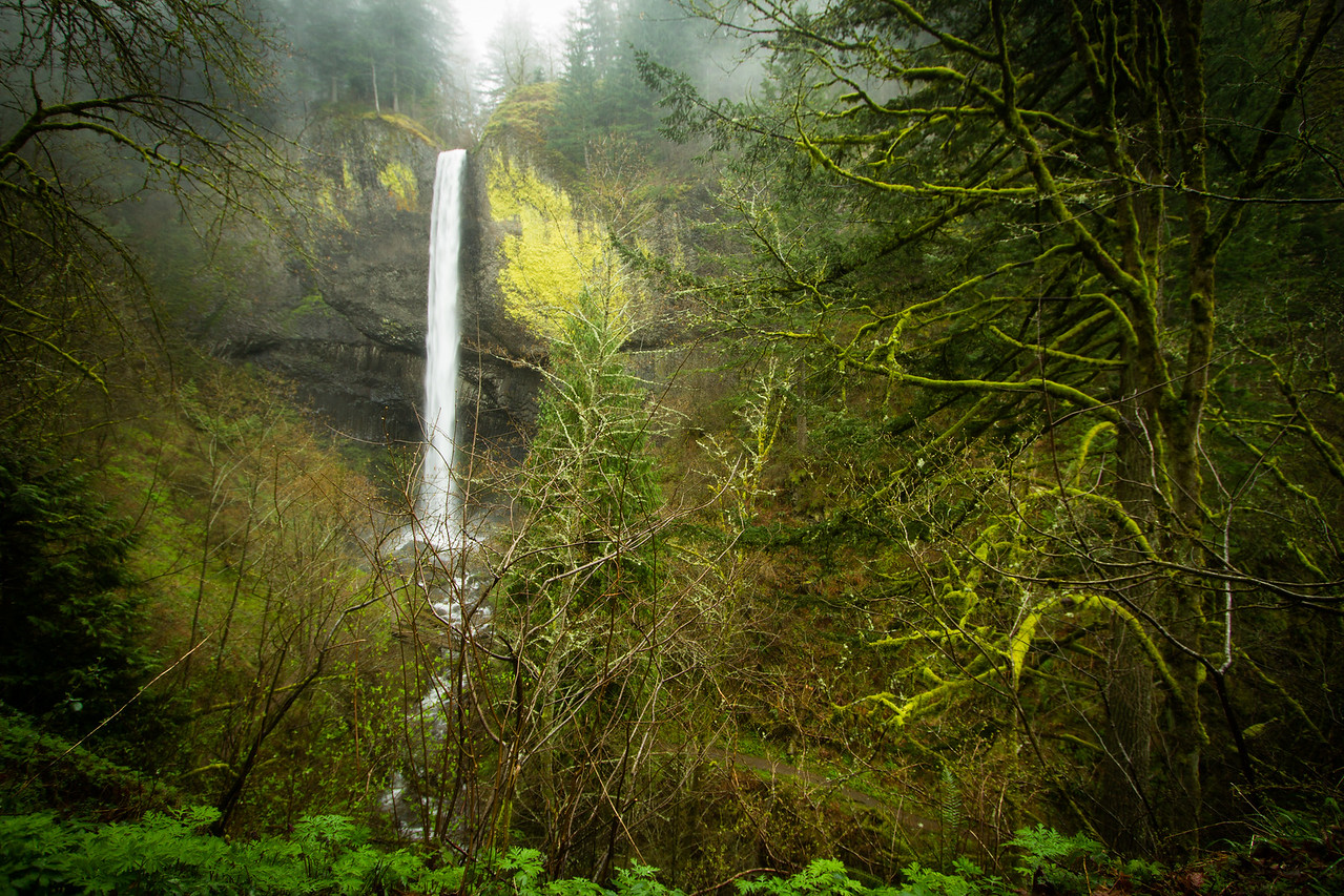Latourell Falls Outside of Portland, Oregon