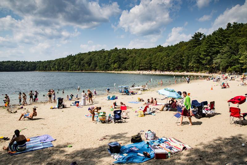 Beach at Walden Pond