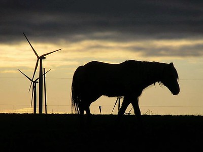 Becky A. Dickman Horse power versus wind power.  To me this represents the progression from horse power to wind power.  I thought the horse looked a little sad as it walked away.