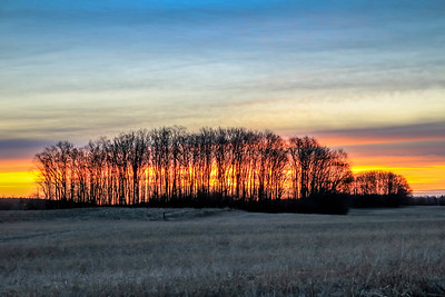 Late Winter Sunrise by Tanya Troupe
