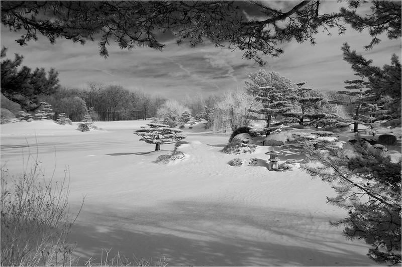 John Peterson Winter Framing--F