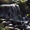 Bob Erickson sunny-water