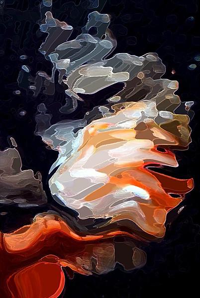 Sue Lindell-Goldfish-A