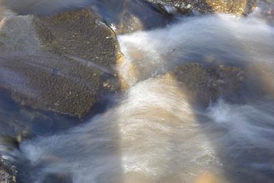Tom Vincent - Salt Creek Rapids 1