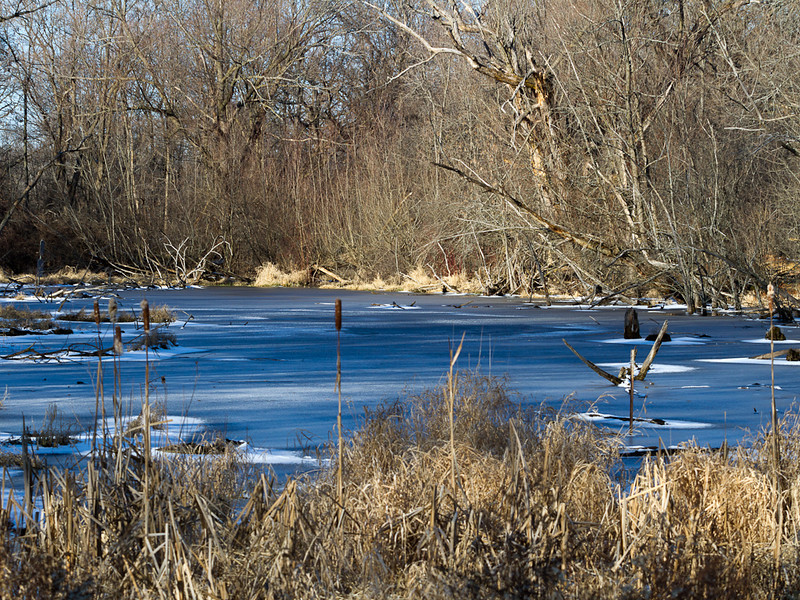 John Kraft - Frozen Pond_-7
