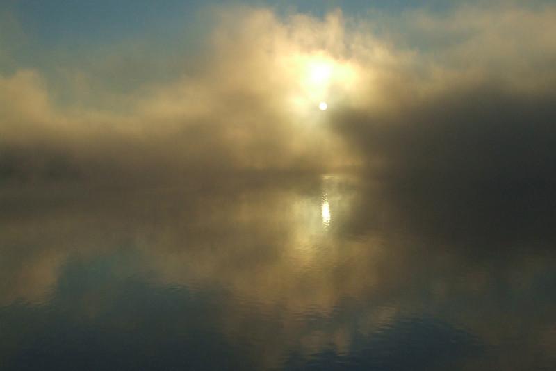 Bob Erickson-foggy-morning