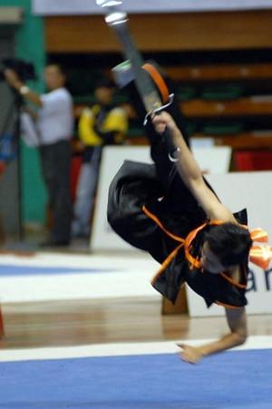 Wushu Competition 2007 - 2