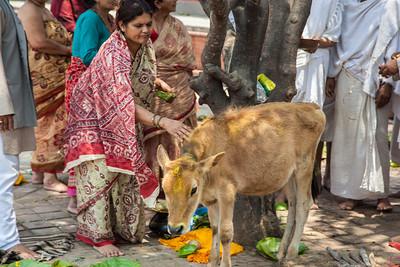 Hindu Death Ritual